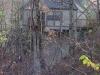 logangate-pedestal-1616-treetops