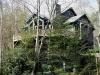 logangate-pedestal-2020-echota-tree-house